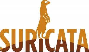 Suricata - an open source, high performance Network IDS, IPS and Network Security Monitoring engine.